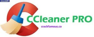 CCleaner Pro 5.64.7613 Crack Latest License Key Free Download [2020]